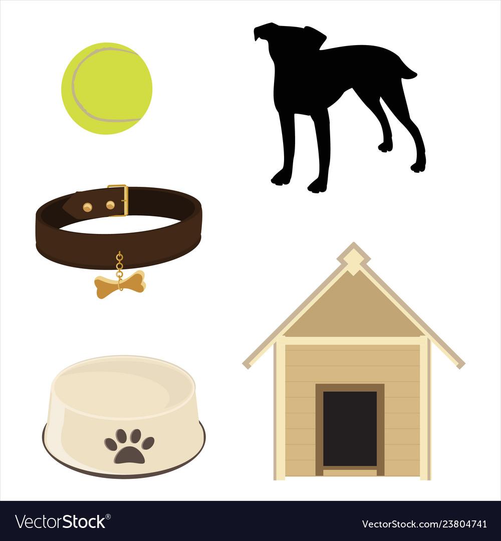 Pet care concept