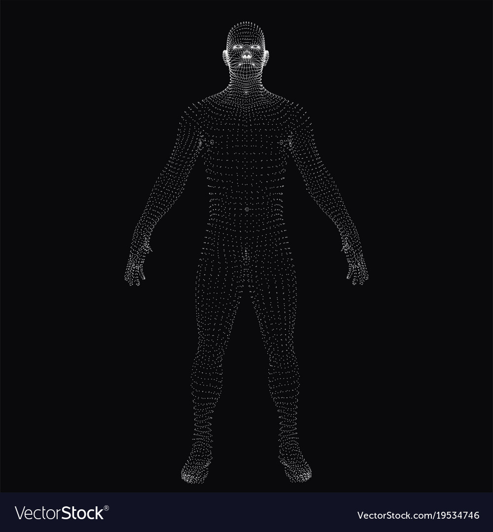 3d human body dotted wireframe