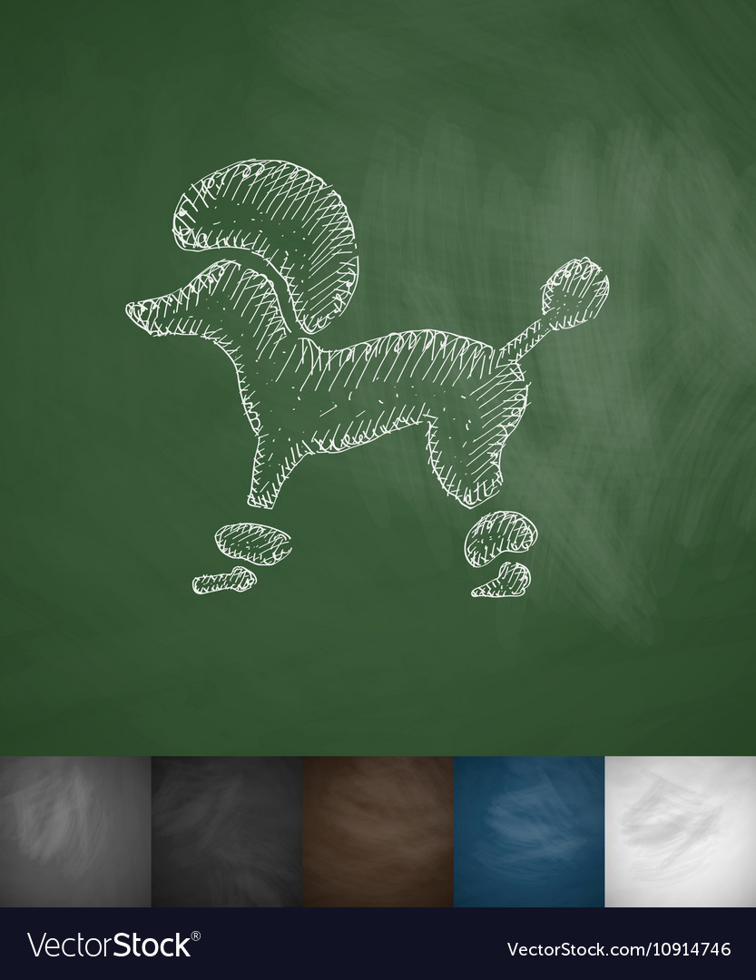 Poodle icon Hand drawn