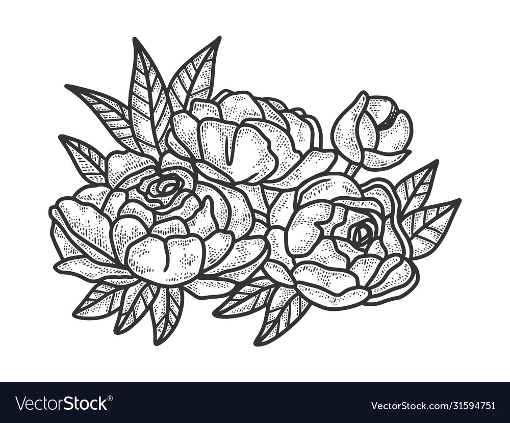 Peony flower sketch