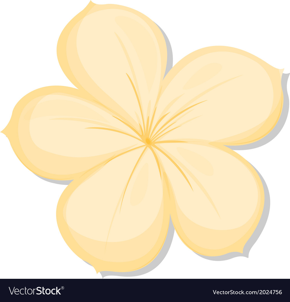 A Five Petal Yellow Flower Royalty Free Vector Image