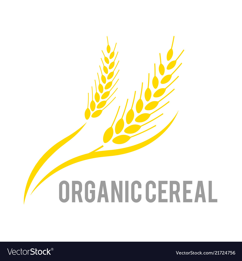 Agriculture wheat logo template logo