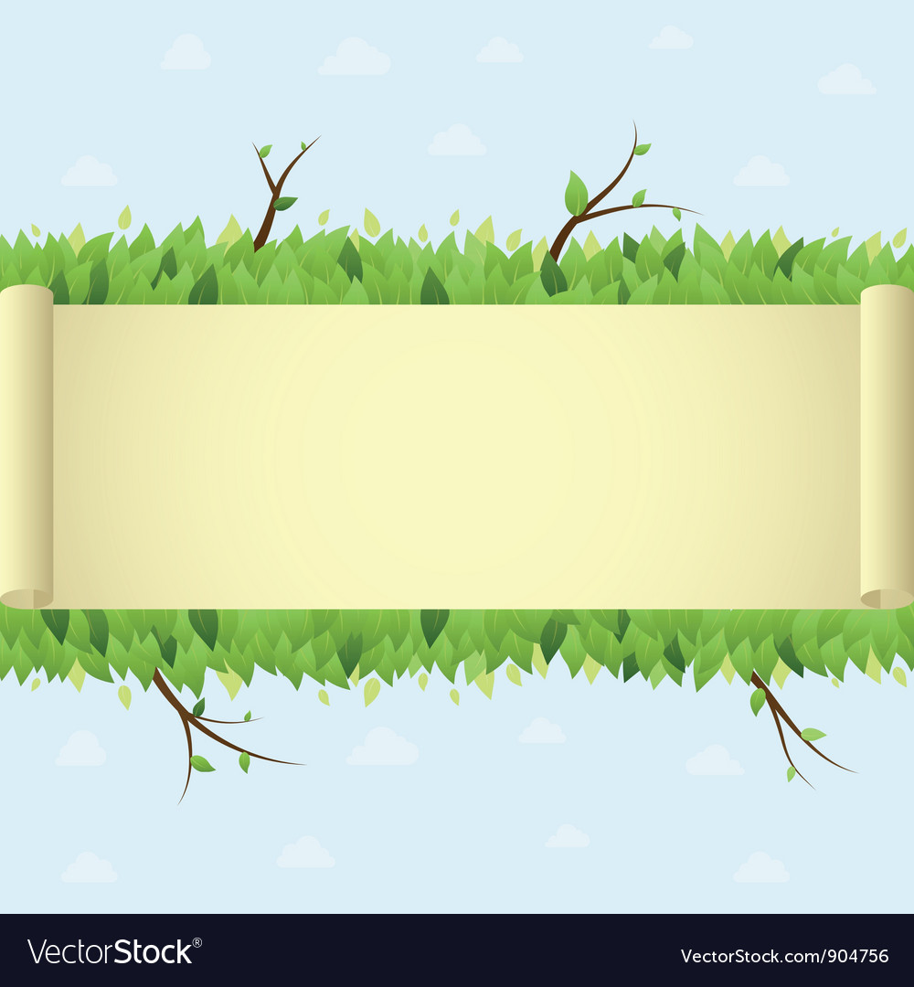 Summer background with scroll vector