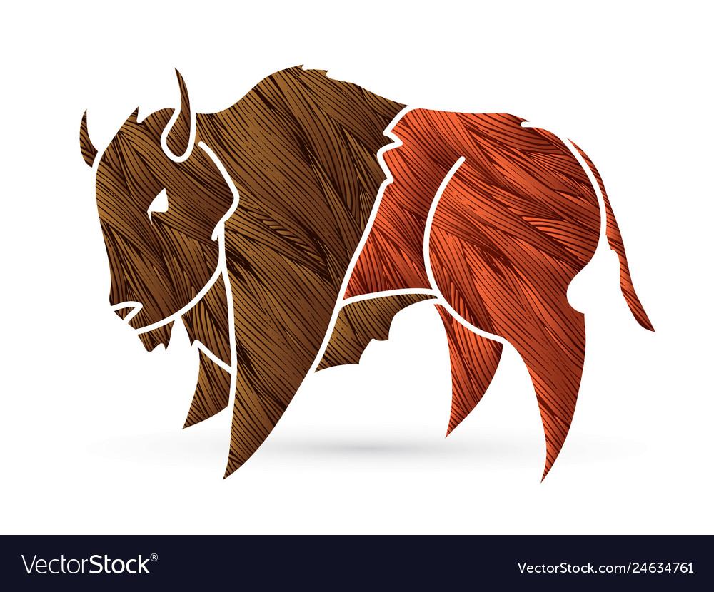 Buffalo bison graphic