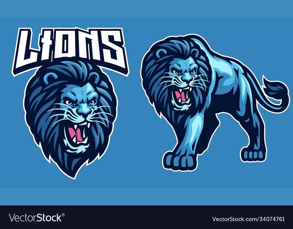 Mascot sport lion in set