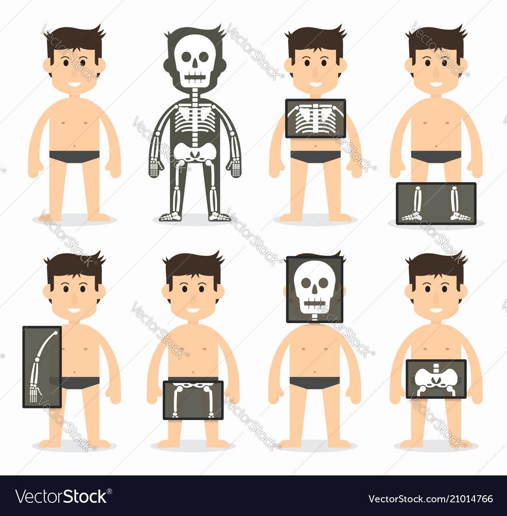 Human and total bone scan flat design