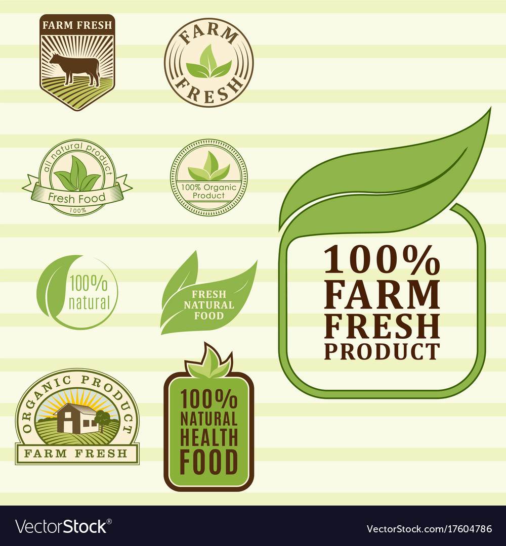 Bio farm organic eco healthy food templates and