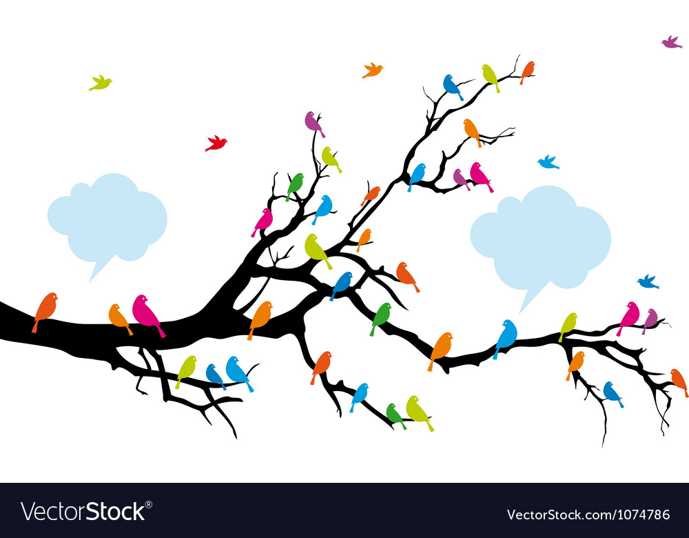 Colorful birds sitting on tree branch