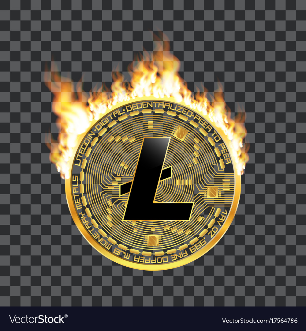 Crypto currency litecoin golden symbol on fire vector image