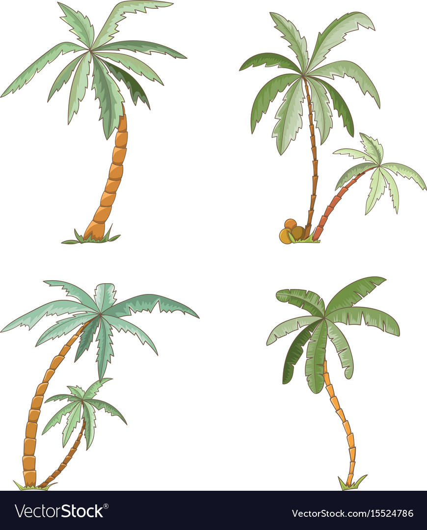 Hand drawn tropical palm trees set vector image