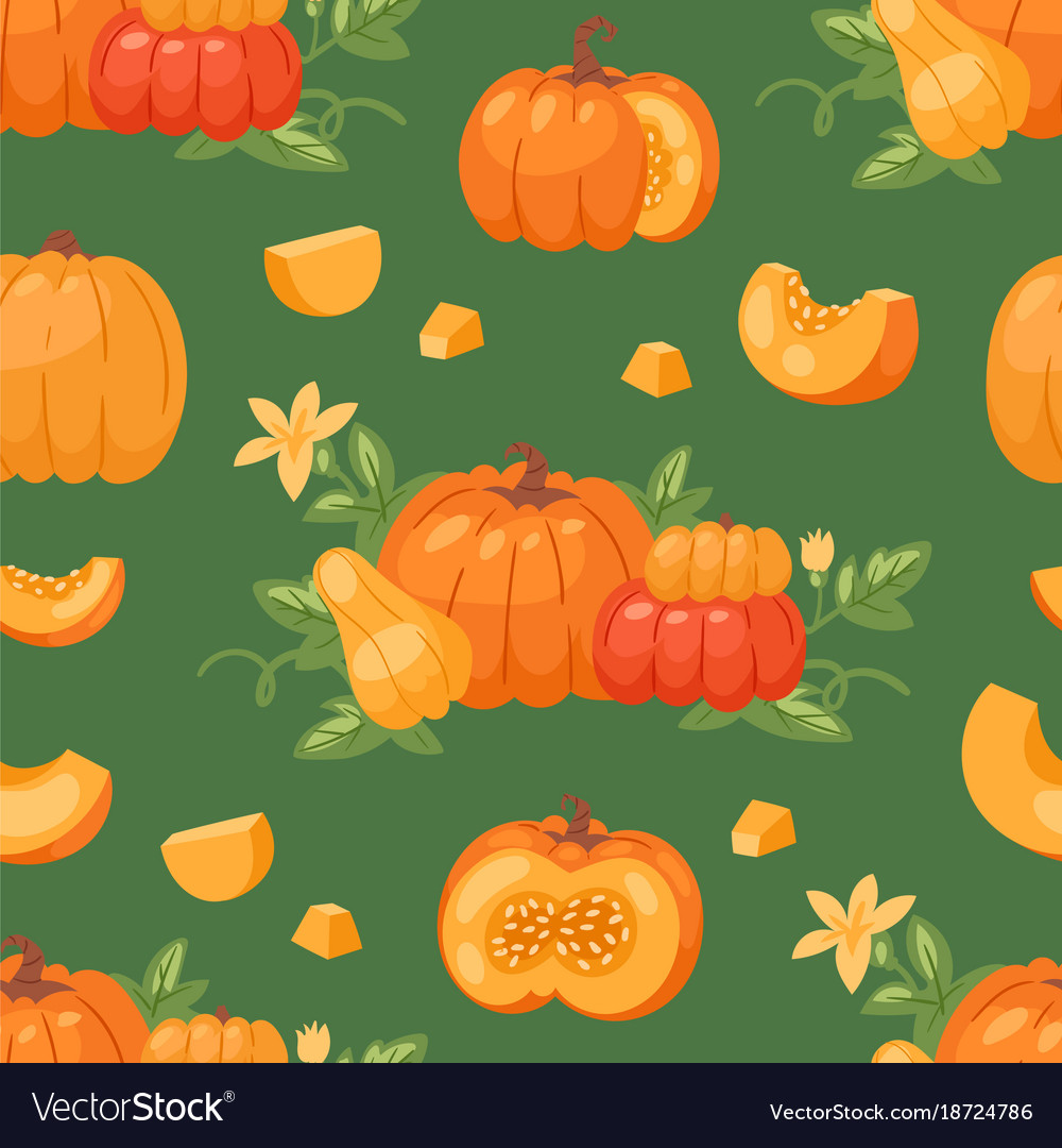 Pumpkin vegetable organic healthy autumn