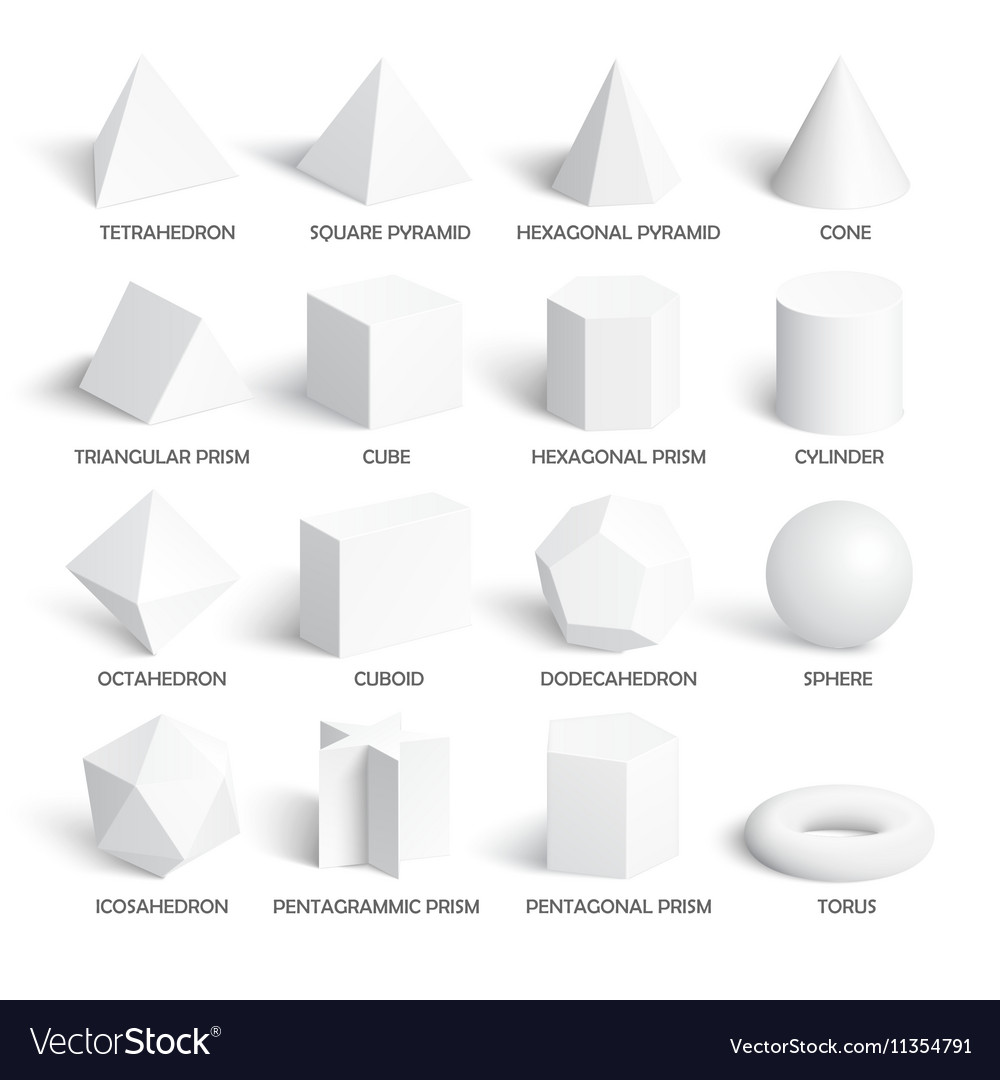 All Basic 3d Shapes Template Royalty Free Vector Image