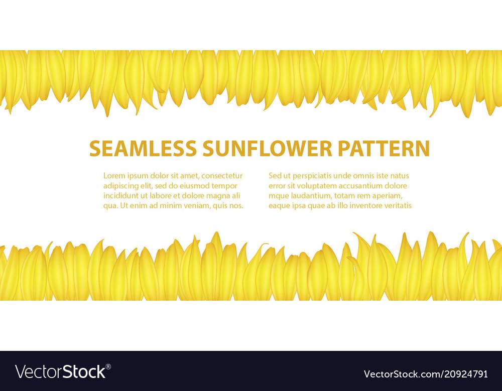 Banner template from sunflower