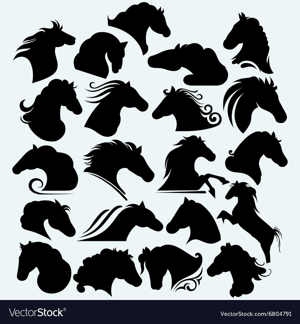 Set icon wild horses vector image