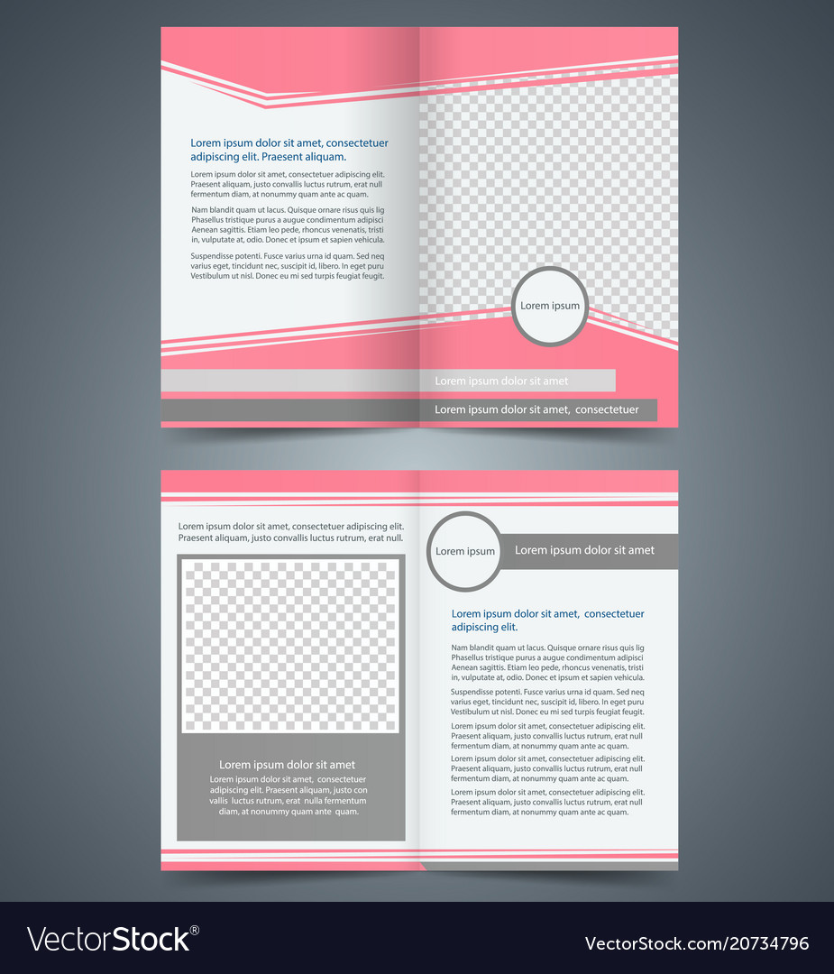 empty bifold brochure template design royalty free vector