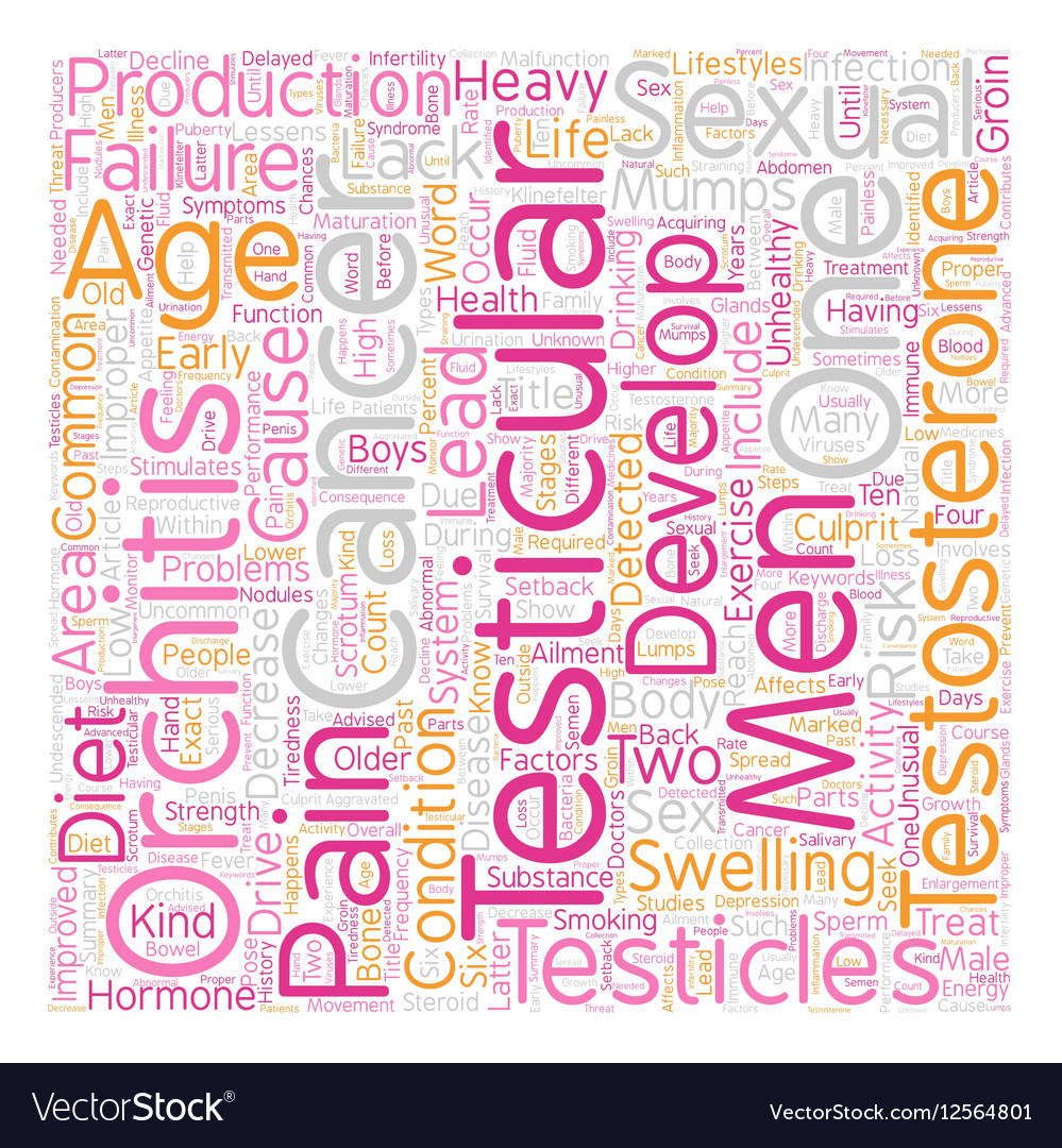 Testicular Problems And Sexual Activity text vector image