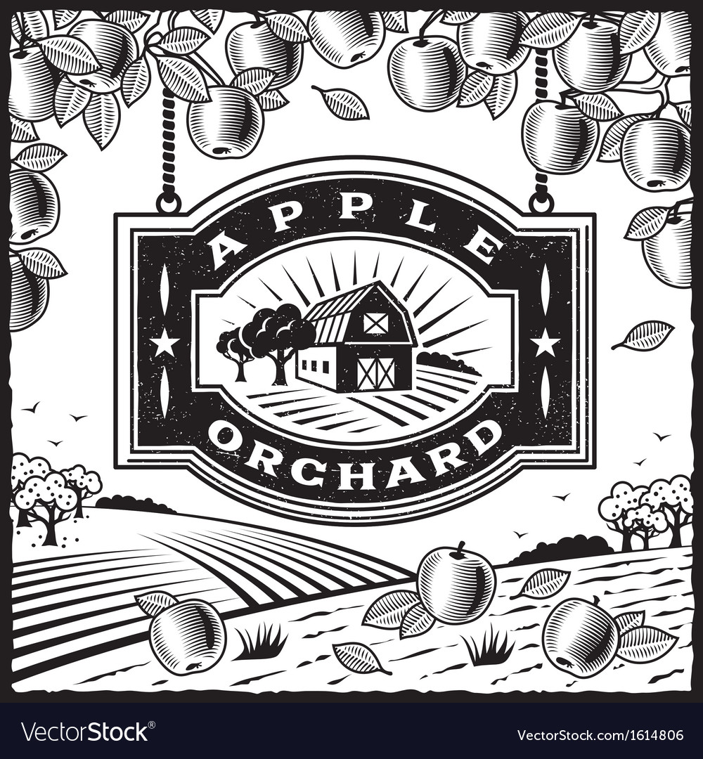 Apple Orchard black and white vector image