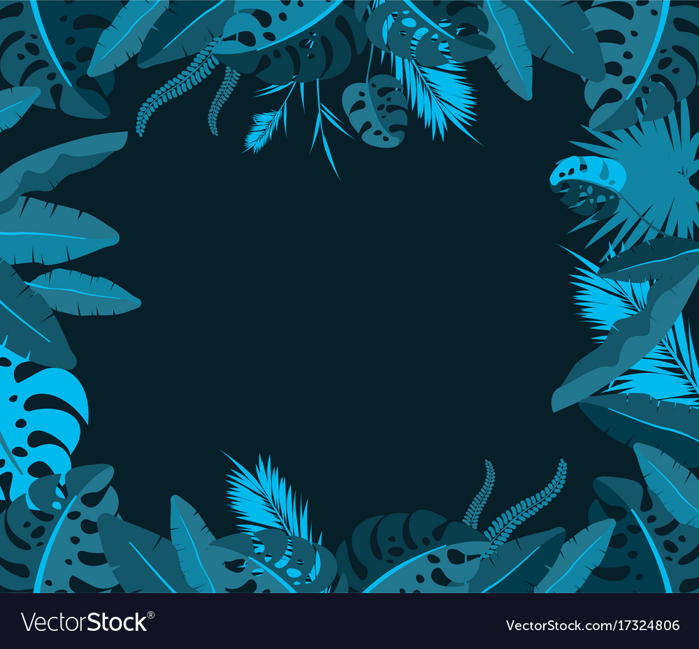 Frame with tropical jungle leaves vector image