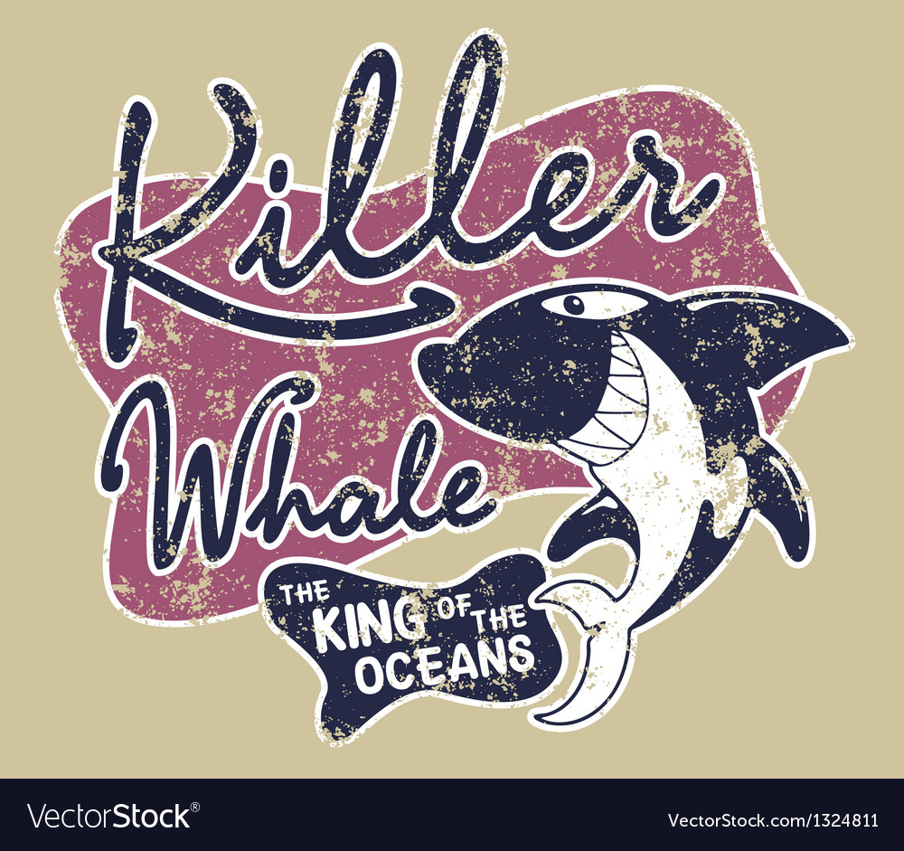 Killer whale badge vector image