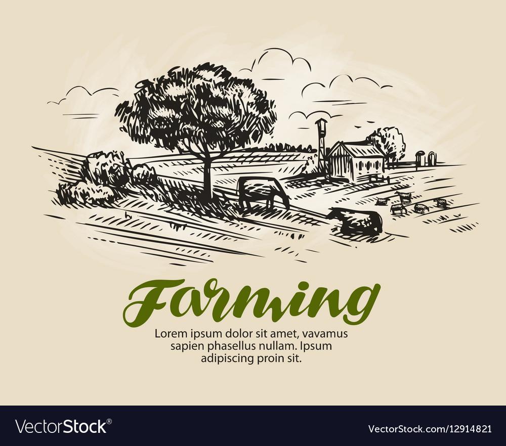 Farm sketch Rural landscape agriculture farming