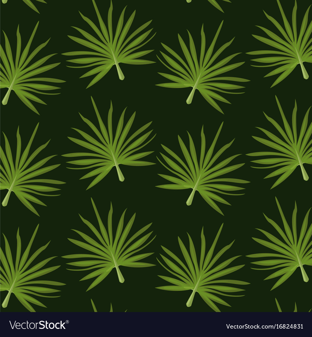 Pattern color set decorative of palm irregular