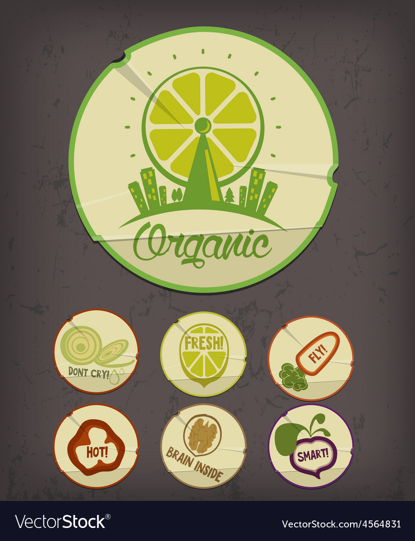 Vintage stickers with logotype and icon vector image