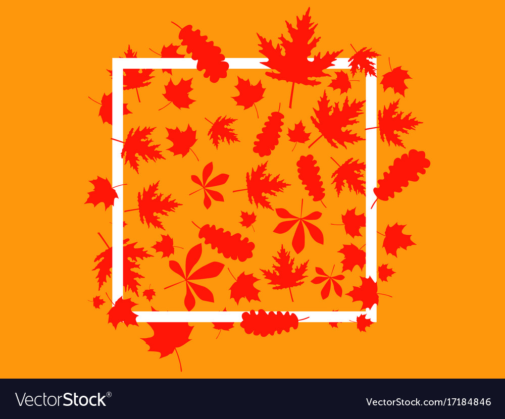 Autumnal frame with leaves vector image