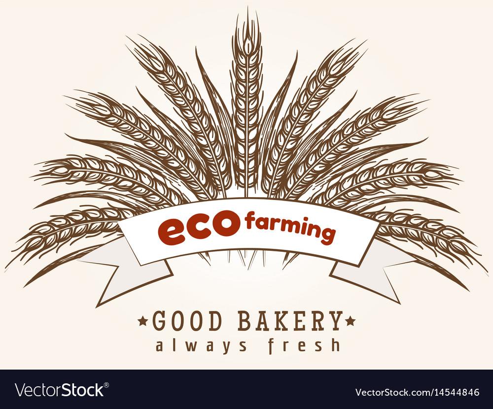 Eco farming emblem with wheat ears