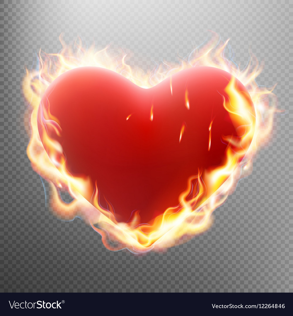 Vlentine s day concept Heart in flame EPS 10 vector image
