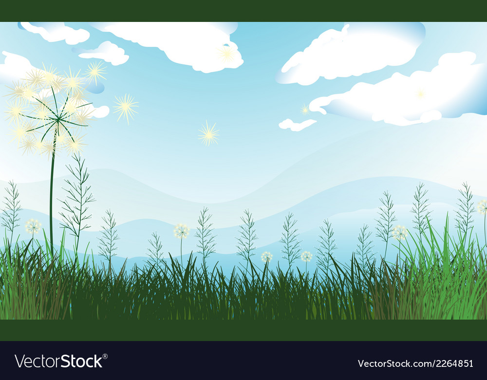 Tall grasses under the blue sky