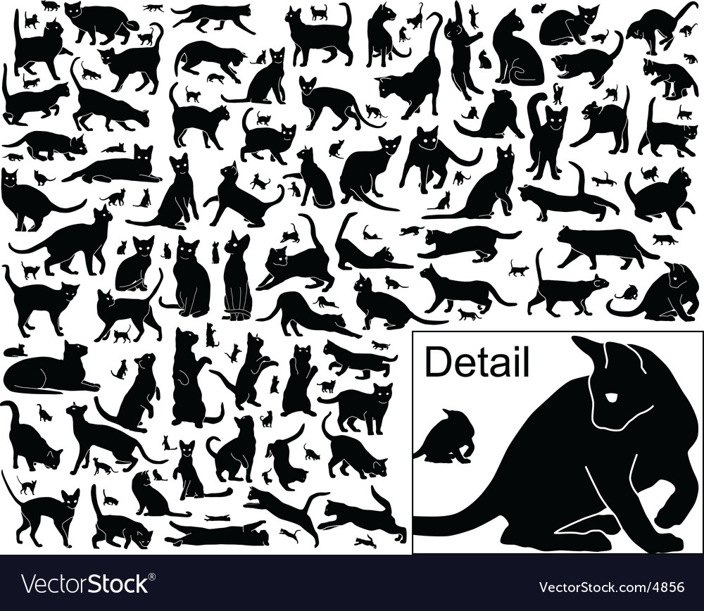 Cat outlines