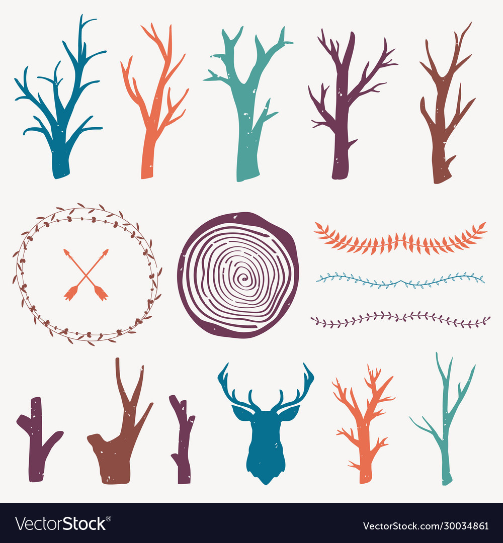 Colorful graphic set with forest design elements