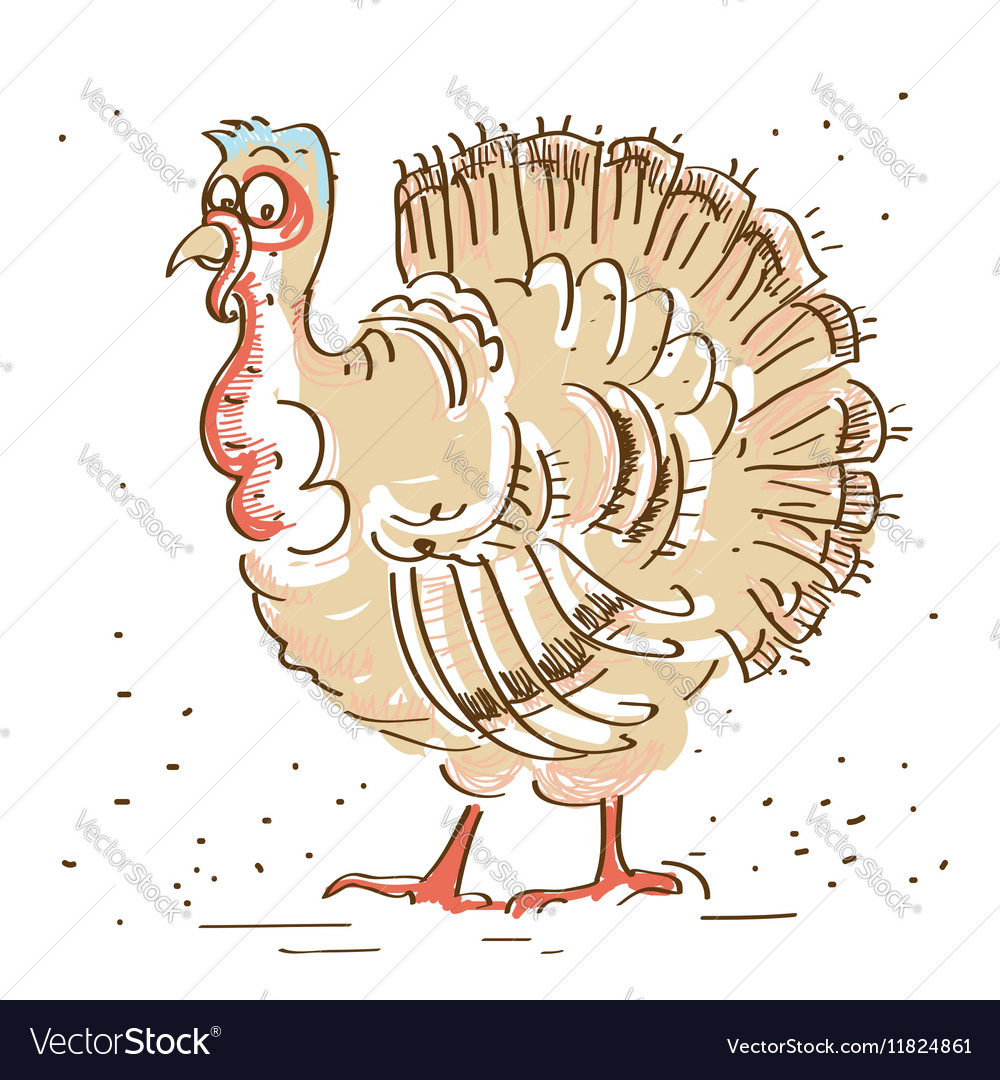 Thanksgiving turkey isolated on white