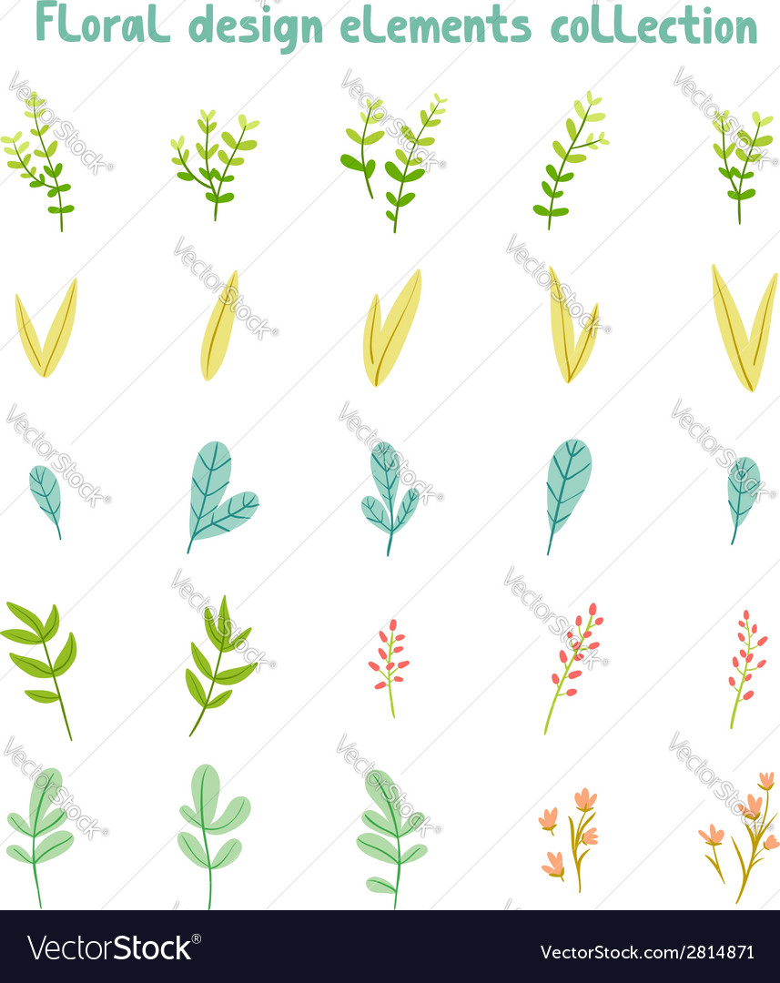 Decorative leaves and flowers design elements