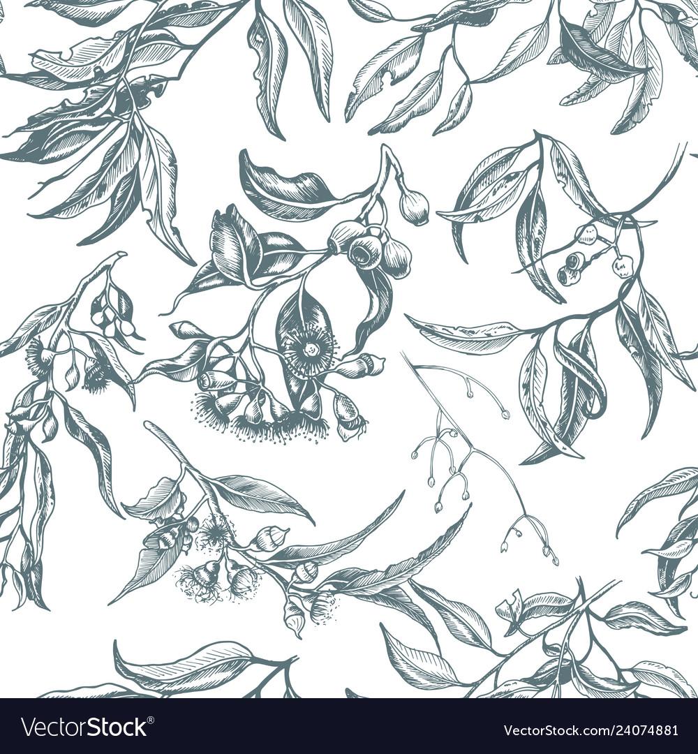 Hand drawn pattern eucalyptus succulent flowers