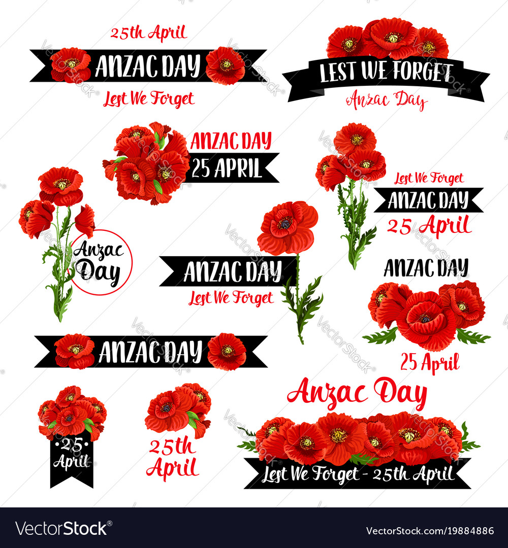 Anzac Remembrance Day Badge Of Red Poppy Flower Vector Image