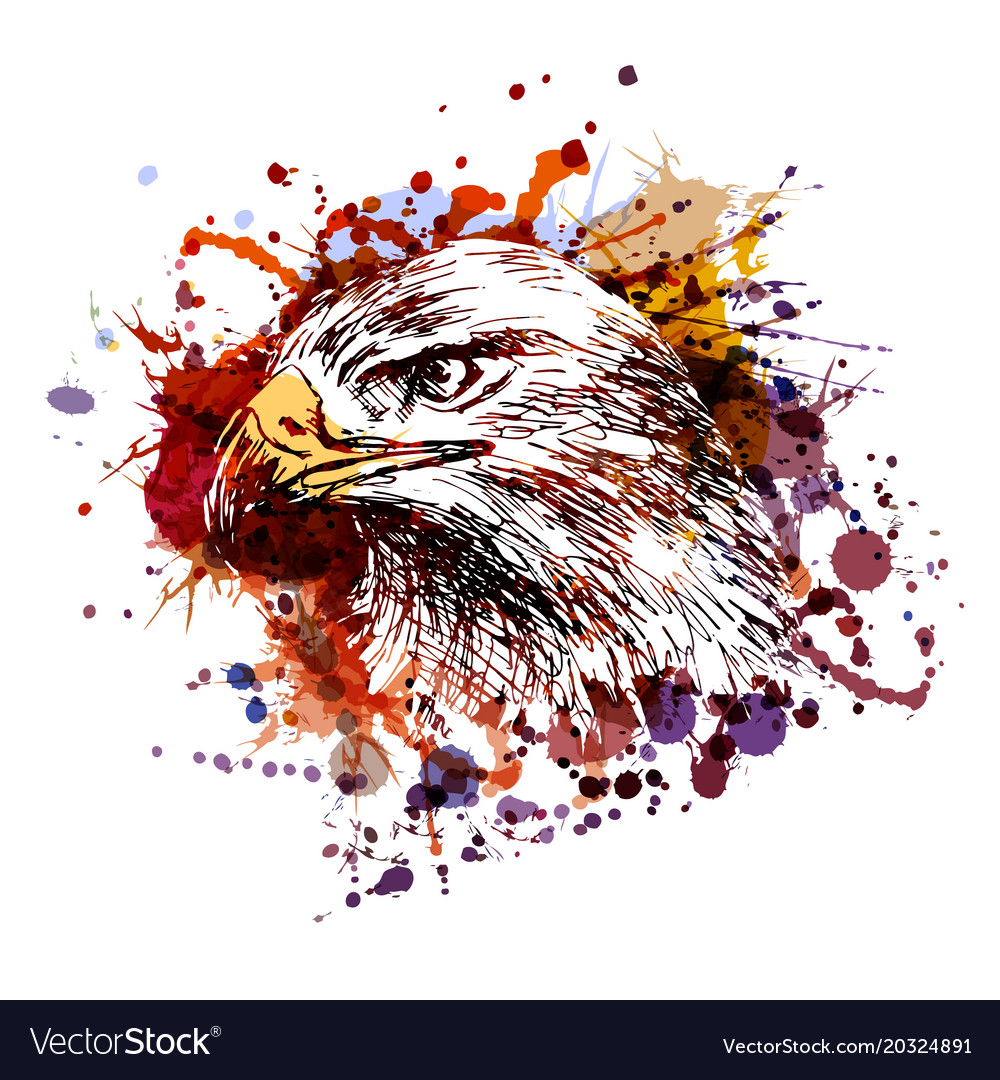 Color of an eagle head