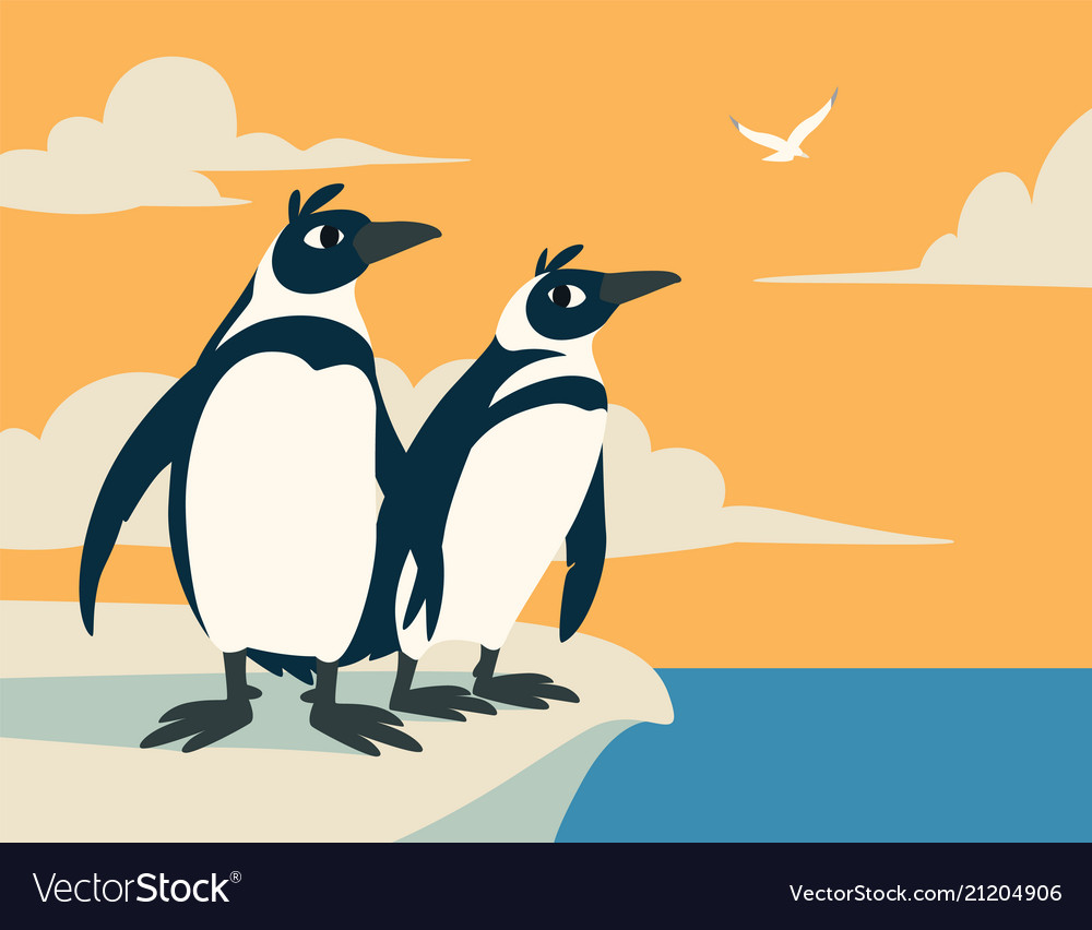 Cute penguins family of arctic birds look into