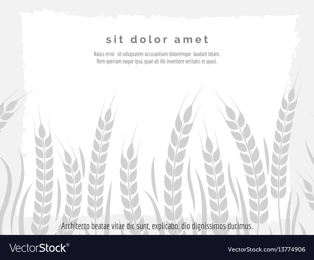 Horizontal agriculture poster with wheat branches
