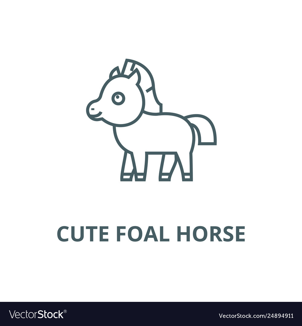 Cute Foal Horse Line Icon Cute Foal Horse Vector Image