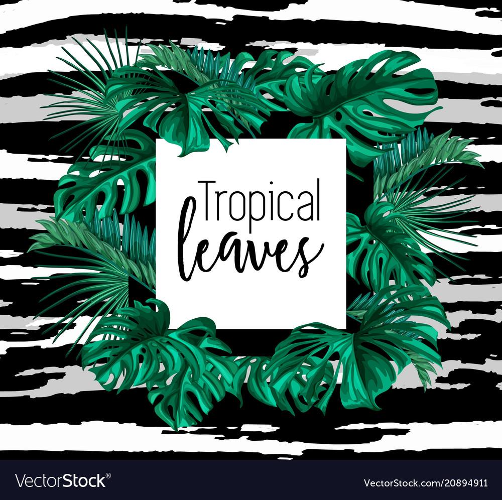 Tropical exotic leaves summer frame banner