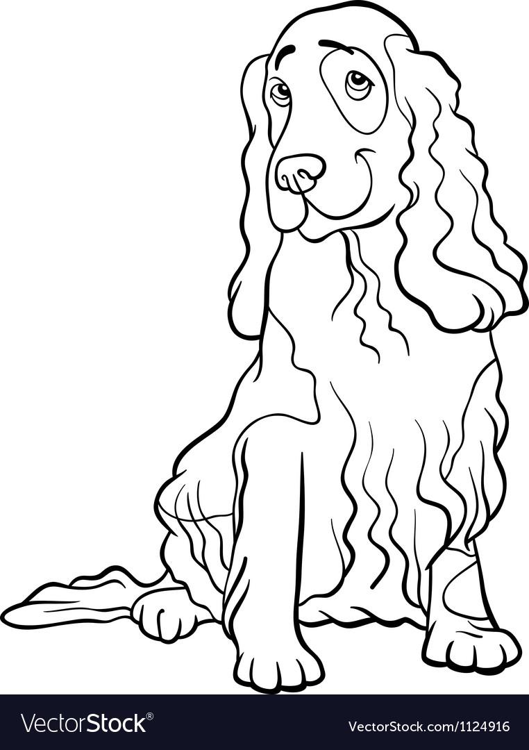 Cocker Spaniel Dog Cartoon For Coloring Book Vector Image