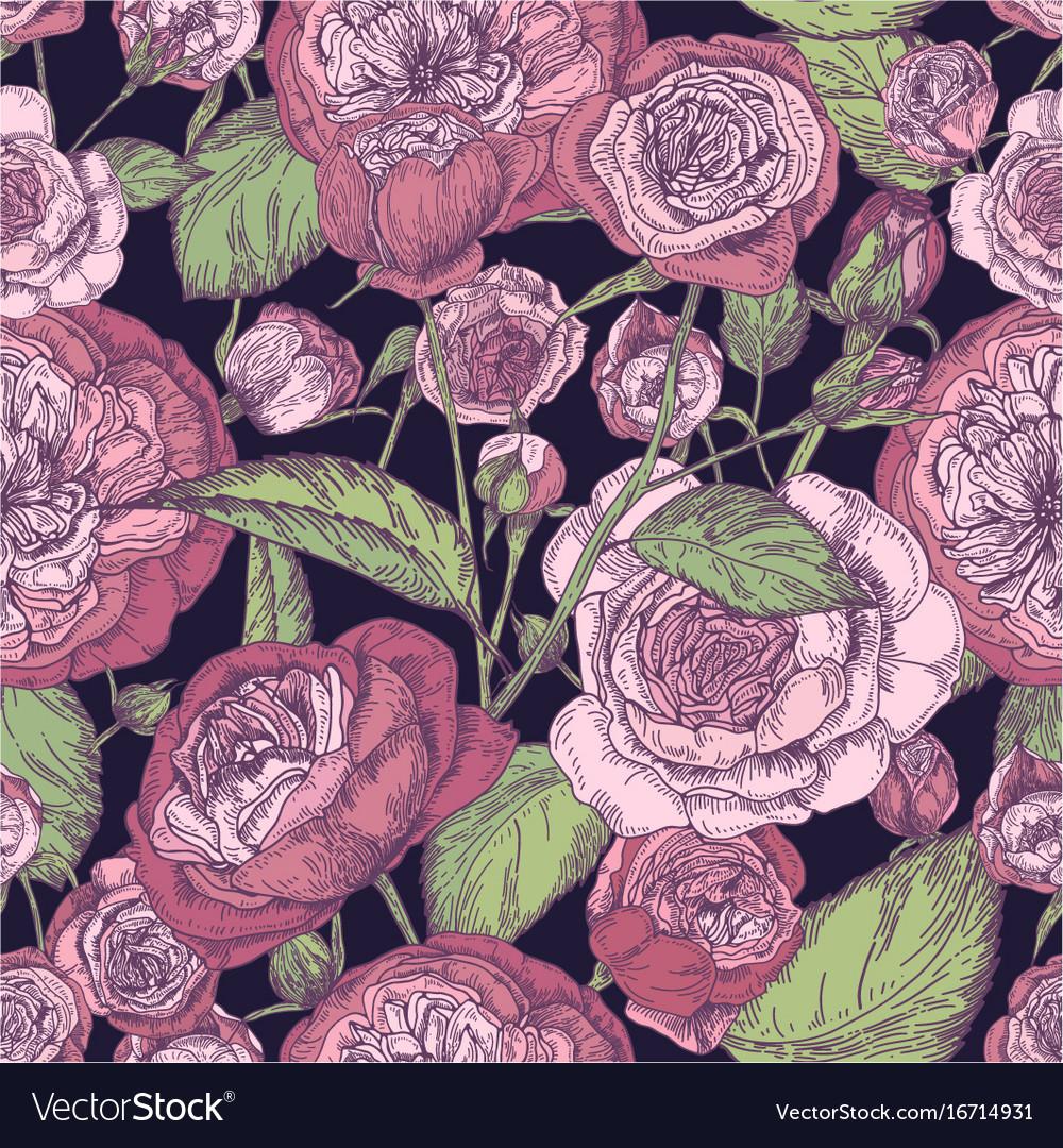 Beautiful detailed pion-shaped rose seamless