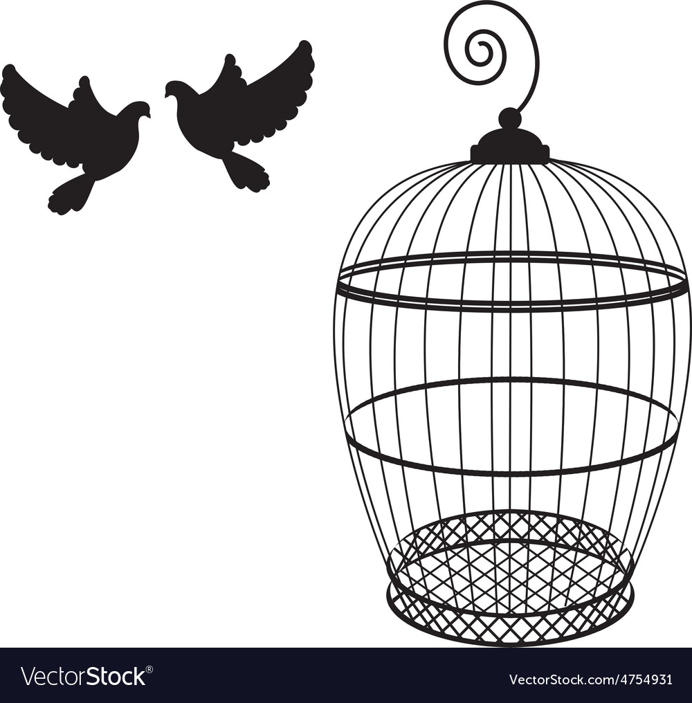 Birdcage and two pigeon