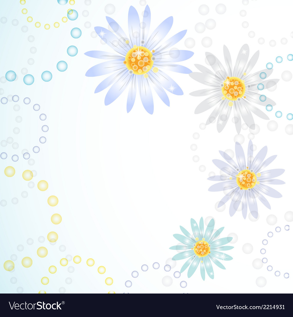 Daisy flowers on the greeting card