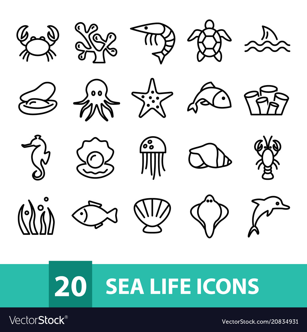 Sea life icons collection