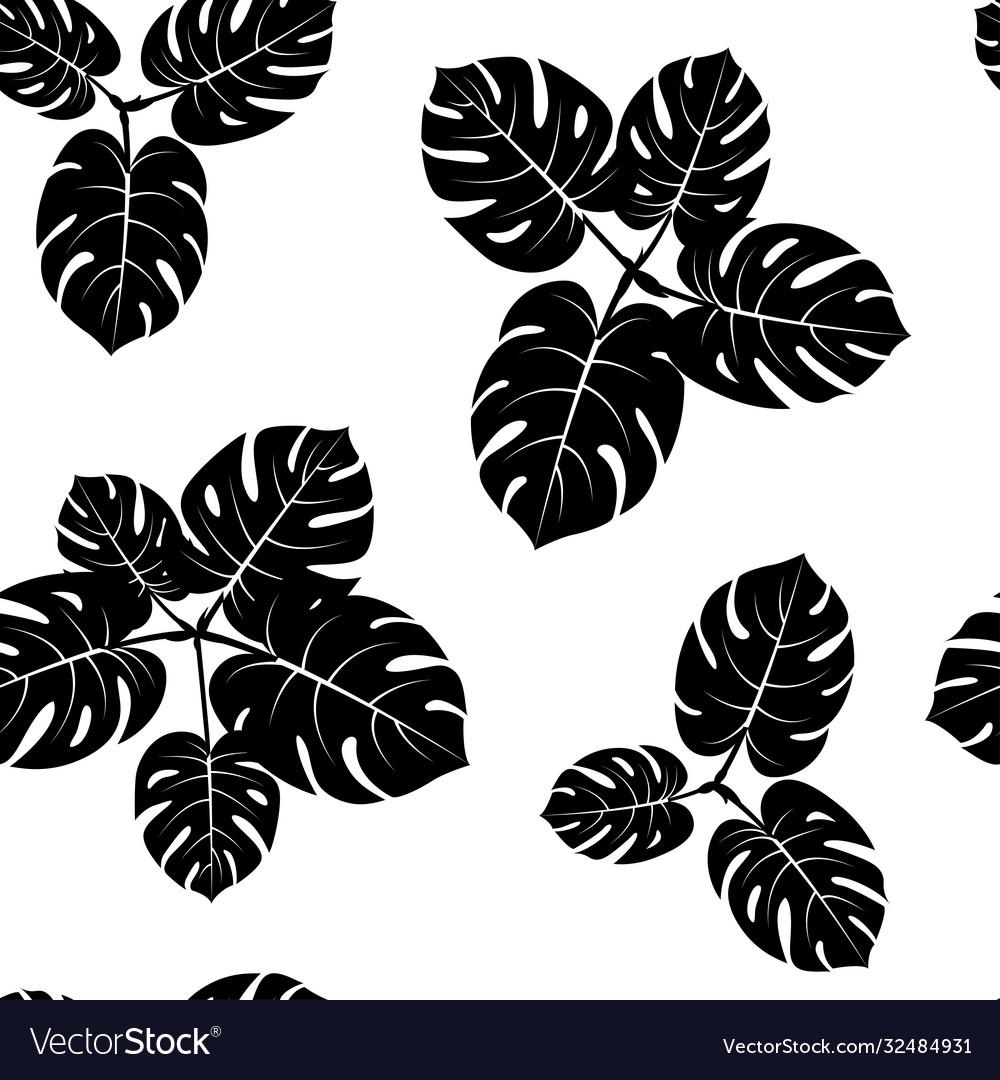 Seamless tropical monstera palm beach leaves
