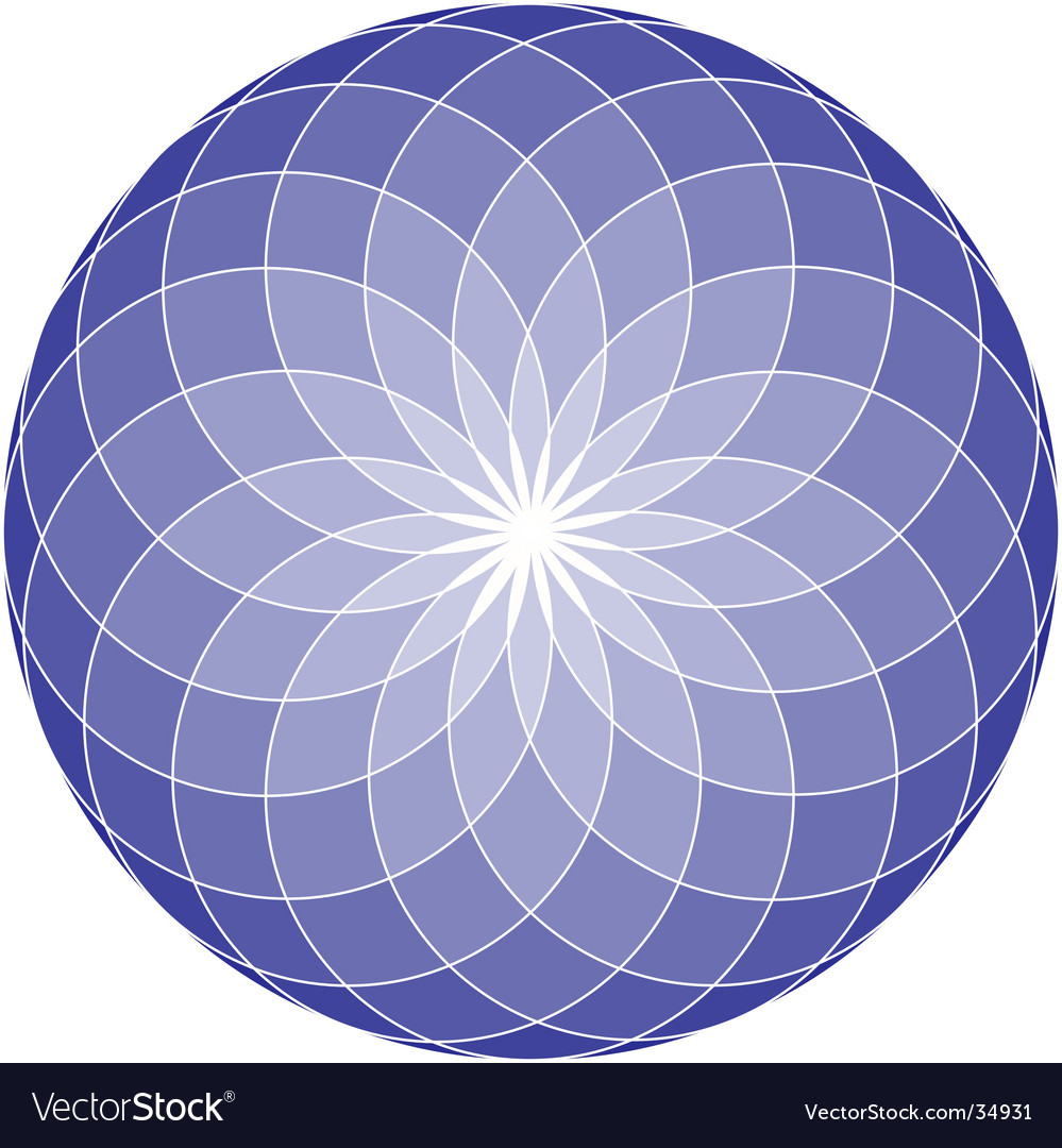 Seed of life mandala vector image
