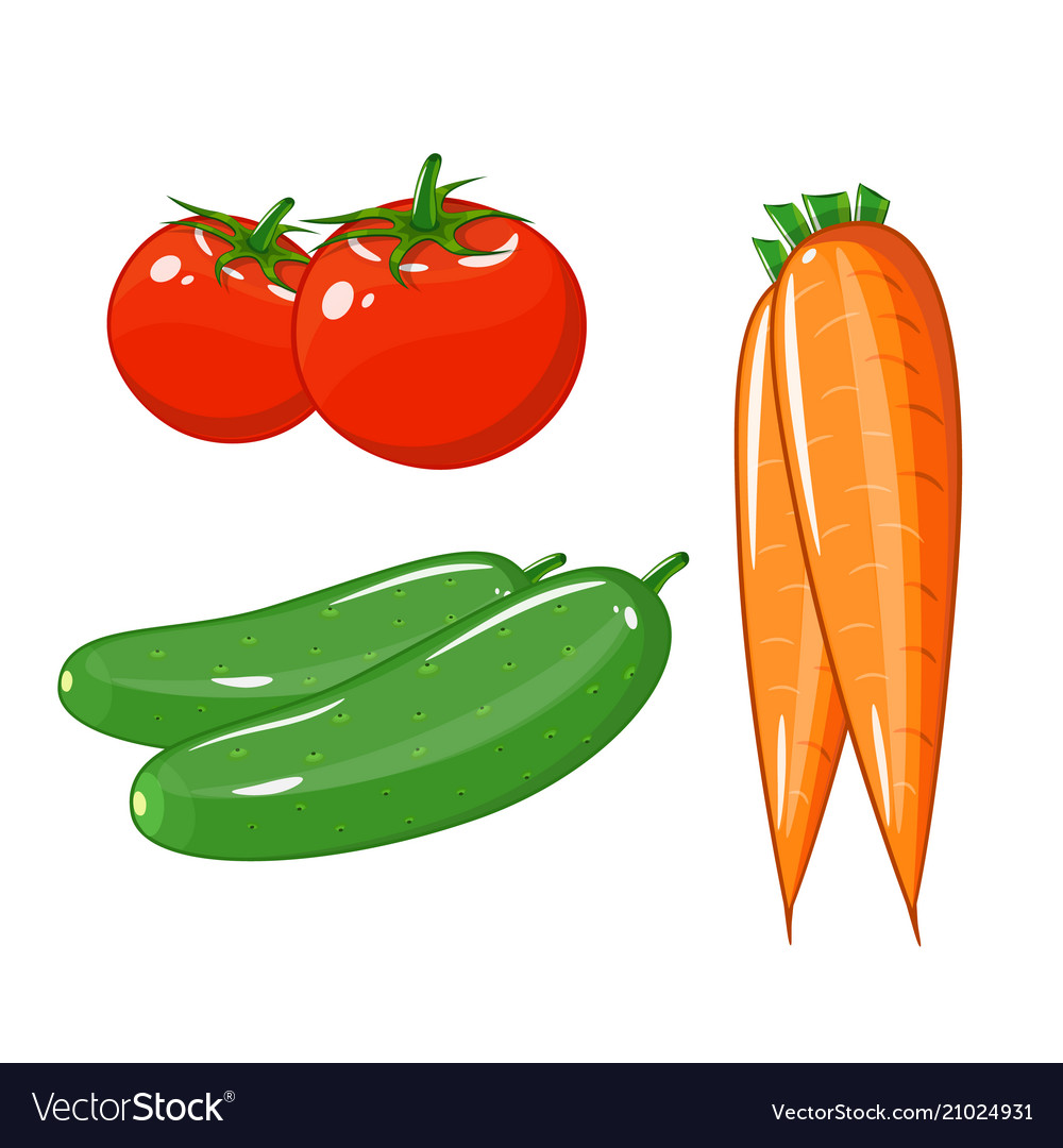 Set of vegetables of tomatoes carrots and