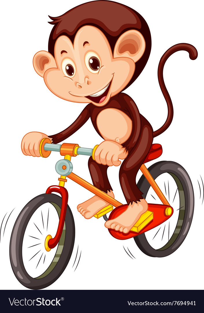 Little monkey riding a bicycle vector image